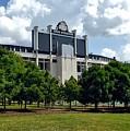 The Buckeye Grove Around Ohio Stadium by Dan Keck