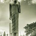 The Buddha Of Roi-et by Brigitte Harper