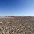 The Bulbus Rock Field In Front Of Mount Zin by Gal Eitan