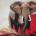 Win Win - The  Bull Elephant  by Sigrid Tune