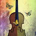 The Butterflies And The Violin by Bill Cannon