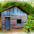 The Cabin by Jim  Darnall