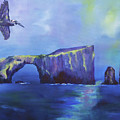 The California Brown Pelican And Acacapa Island Arch Rock by Stacey Best