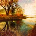 The Calm By The Creek by Tara Turner