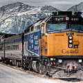 The Canadian - Via 6411 by R J Ruppenthal