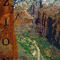 The Canyon Of Zion by David Lee Thompson