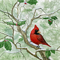 The Cardinal by Mary Tuomi