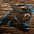 The Carolina Panthers 4a by Brian Reaves