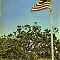 The Casements Flag Flying by Alice Gipson