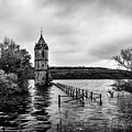 The Cathedral Of Fish Bw by RicardMN Photography