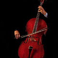 The Cellist by David and Carol Kelly