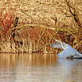 The Chase Is Over by Debbie Oppermann