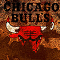 The Chicago Bulls R1 by Brian Reaves