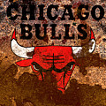The Chicago Bulls R2 by Brian Reaves