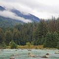 The Chillkoot River 2 by Richard J Cassato
