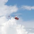 The Chopper by Rob Hans