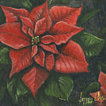 The Christmas Flower by Jeff Brimley
