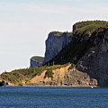 The Cliffs Of Forillon  by John Meader