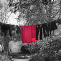 The Clothes Line by Robin Zygelman