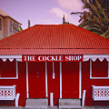 The Cockle Shop by Shaun Higson