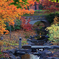The Colors Of Fall by Karen Goodwin