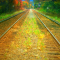 The Colour Along The Tracks by Tara Turner