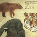 The Columbus, Oh Zoo by David Yocum