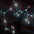 Sagittarius The Archer by Marc Ward