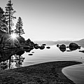 The Cove by Jamie Pham