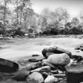 The Creek by Kenneth Krolikowski