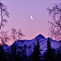 The Crescent Moon In Lavender by Lori Mahaffey