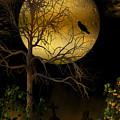 The Crow by Emma Alvarez