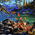 The Crystal Waters Of Lake Tahoe by Andrea Mazzocchetti