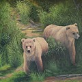 The Cubs Of Katmai by Lorna Allan