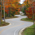 The Curvy Road by Greta Larson Photography