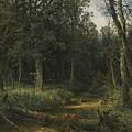 The Dark Wood by Ivan Shishkin