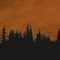 The Dawn by Thomas M Pikolin