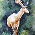 The Deer by Anna Marinova