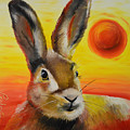 The Desert Hare by Tom Perkowitz