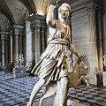 The Diana Of Versailles In The Louvre by Charuhas Images