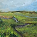 The Distant View Of The Marsh by Michael Helfen