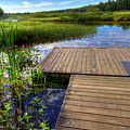 The Dock At Mountainman by David Patterson