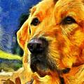 The Dog by Leonardo Digenio