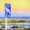 The Dog Park On Pensacola Beach by JC Findley