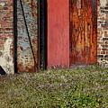 The Door by Alan Skonieczny