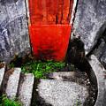 The Door Below by Tara Turner