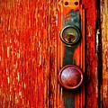 The Door Handle  by Tara Turner