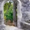 The Door Into Summer by Francesa Miller