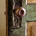The Door Knob by Linda McRae