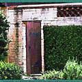 The Door by Susan Molnar